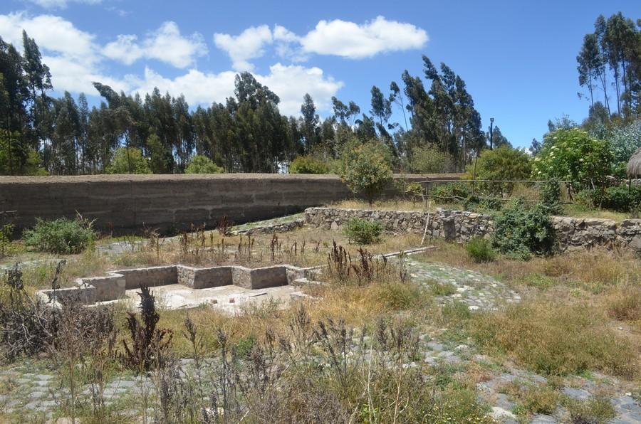 Le parc floral de la Hacienda qui a bien poussé et n'a plus besoin que d'un petit nettoyage pour que le projet soit lancé.