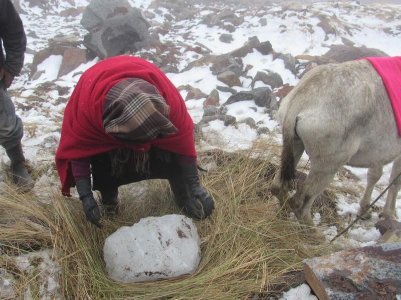 La tradition des Hielero qui monte chercher la glace du Chimborazo pour conserver leurs aliments.