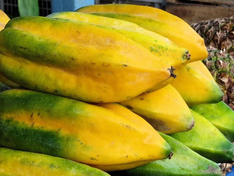 Les babakos sont des fruits originaires de Andes équatoriennes.