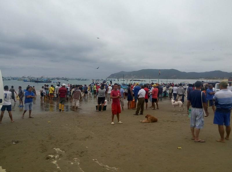 Les pêcheurs reviennent de la pêche et étalent leurs prises sur la plage.